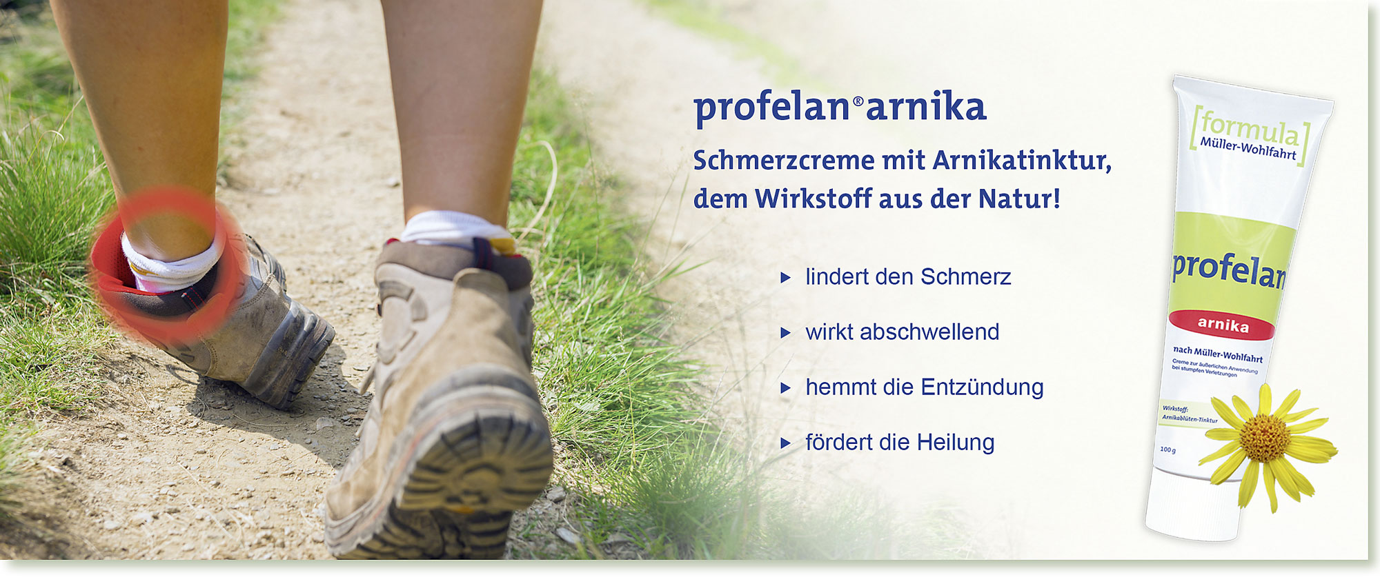 HeadImage | PROFELAN-Arnika Schmerzcreme nach Müller-Wohlfahrt - Wandern